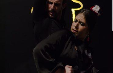 Daniel Romero. Flamenco.