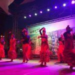 Grupo de Baile Virgen del Carmen.